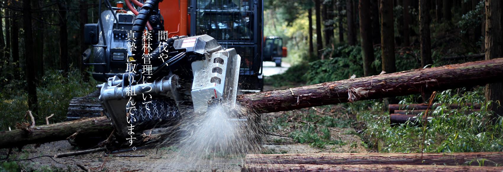間伐や、森林管理について真摯に取り組んでいます。